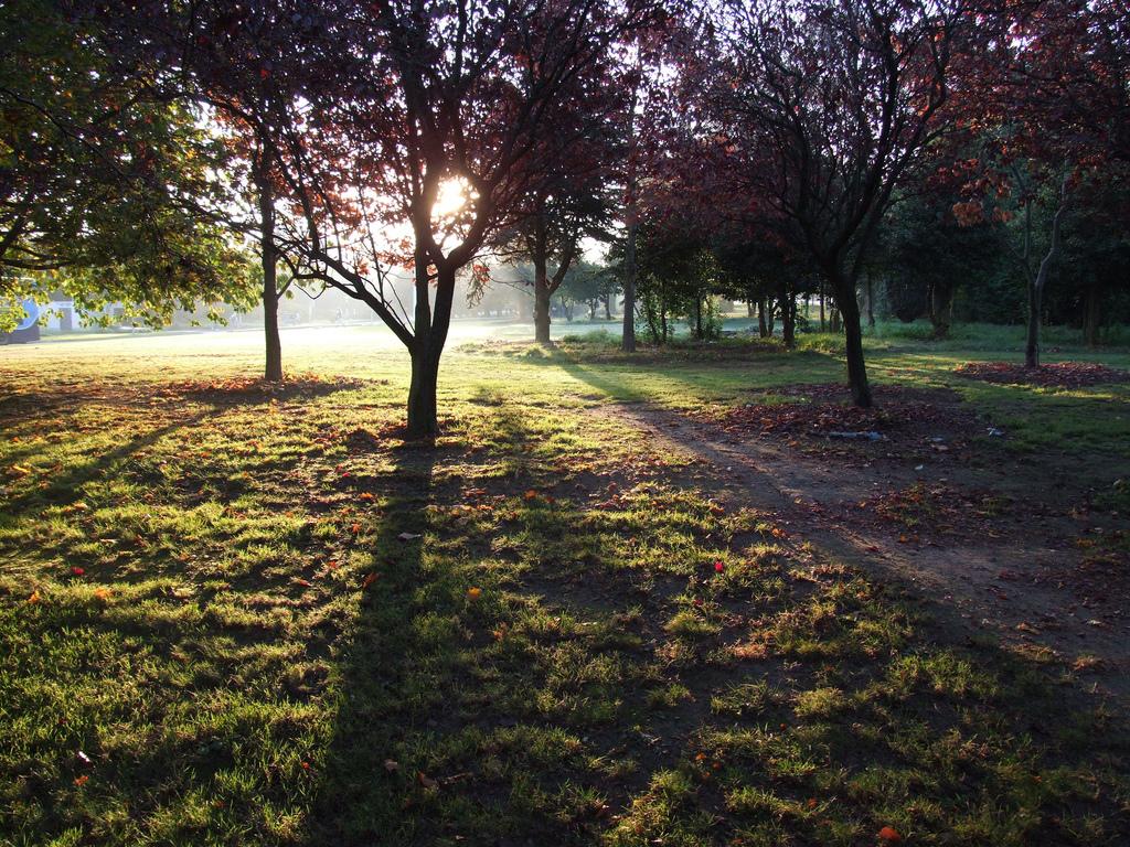 Hvorfor er det hårdere at løbe om morgenen?