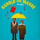 Dica de filme: Harold and Maude