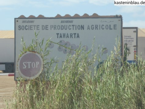 Tomaten-Fabrik