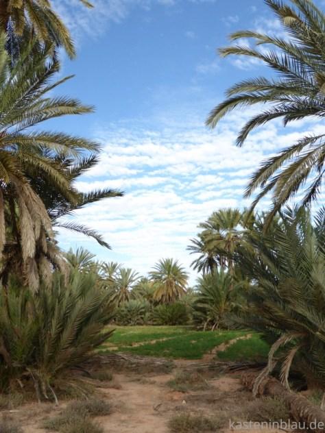 Marokko Oase