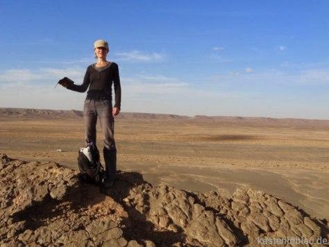Korallenriff mit Fossilien in der Wüste von Marokko