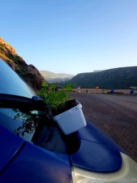 Roadtrip Marokko Mirleft