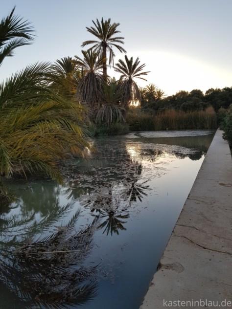 Oase in Marokko