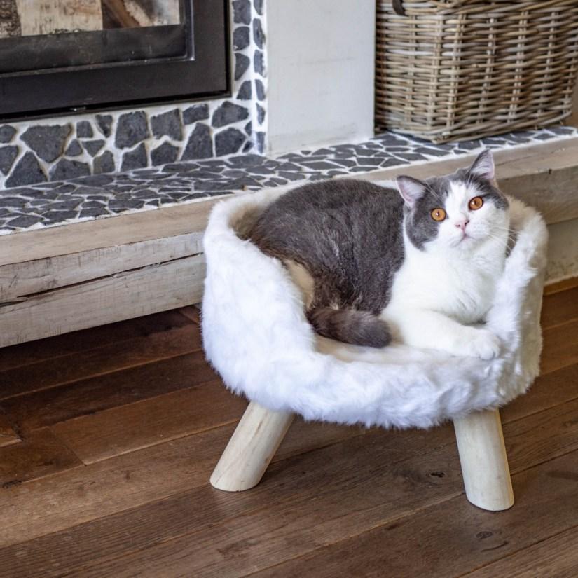 Top 5 design kattenmeubels District 70 mand Nordic zilver