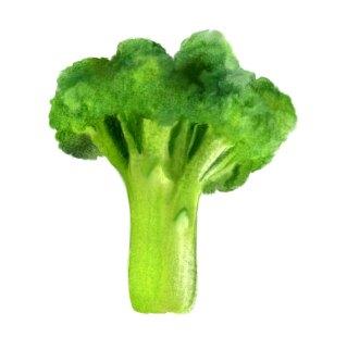 brokuł-drzewo