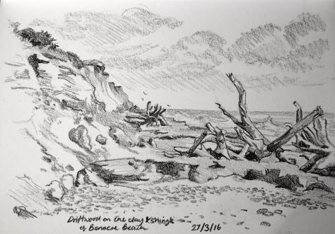 benacre driftwood 87