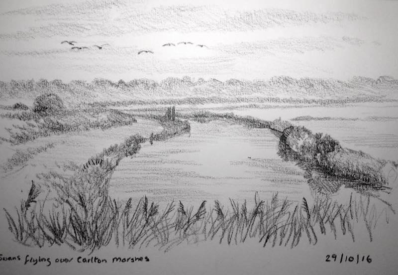 carlton marshes 303