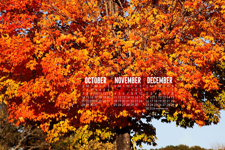 Fall Pumpkin Wallpaper Calendar Wallpapers Desktop Wallpapers By Kate Net