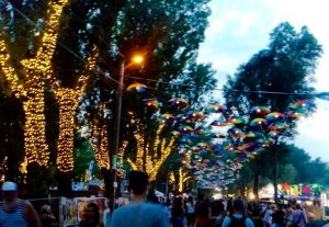 light decoration umbrella tree trunk illumination Sziget Festival