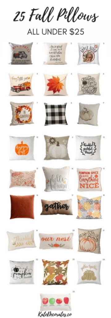 Looking for affordable fall decor? These 25 adorable fall pillows are all under $25!