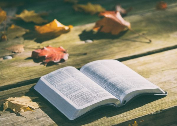 reading the psalms in the cracks