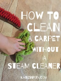 How to Naturally Clean a Carpet Without a Steam Cleaner ...