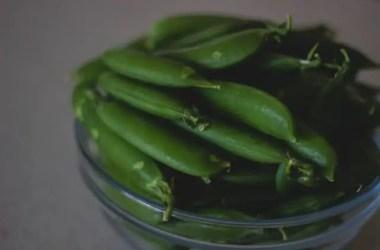 Ensalada de judias verdes