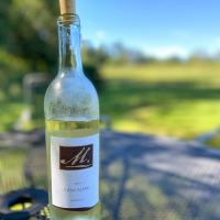 Meriwether Springs Vineyard + Tonic