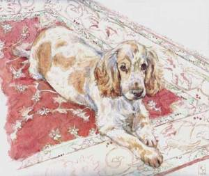 Watercolour portrait of a Spaniel