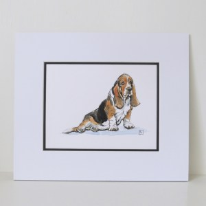 Basset Hound, original watercolour illustration