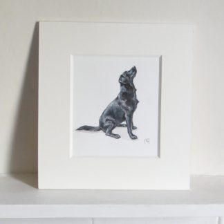 Black Labrador Watercolour Painting