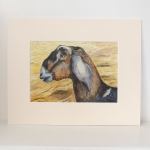 goat watercolour painting for sale