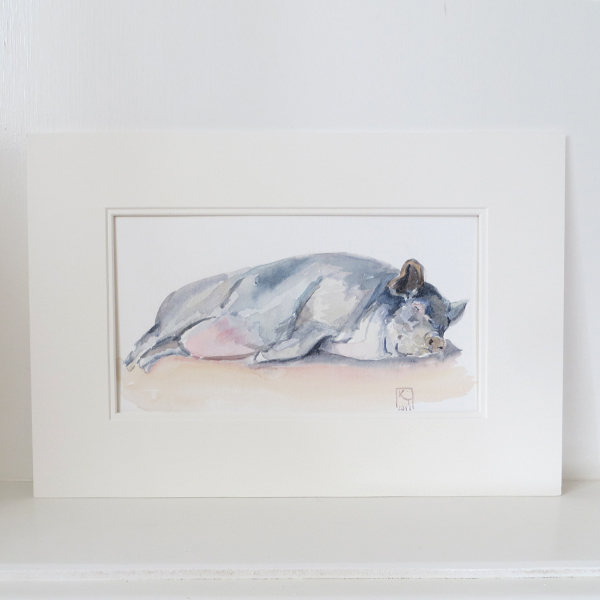 vietnamese pot-bellied pig, pig art