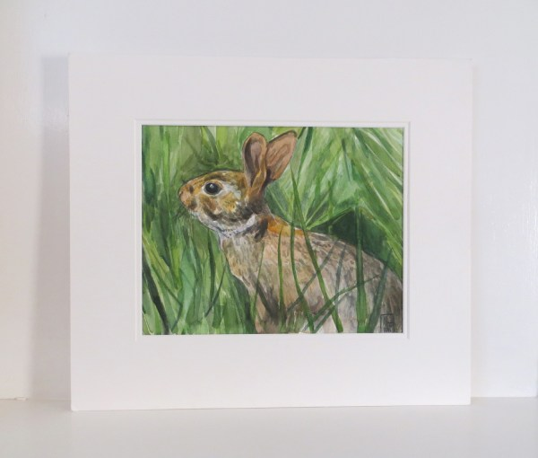 wildlife paintings uk, rabbit paintings