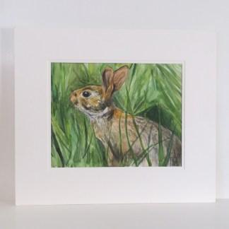 wildlife paintings uk, rabbit paintings