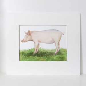 pig watercolour paintings for sale uk