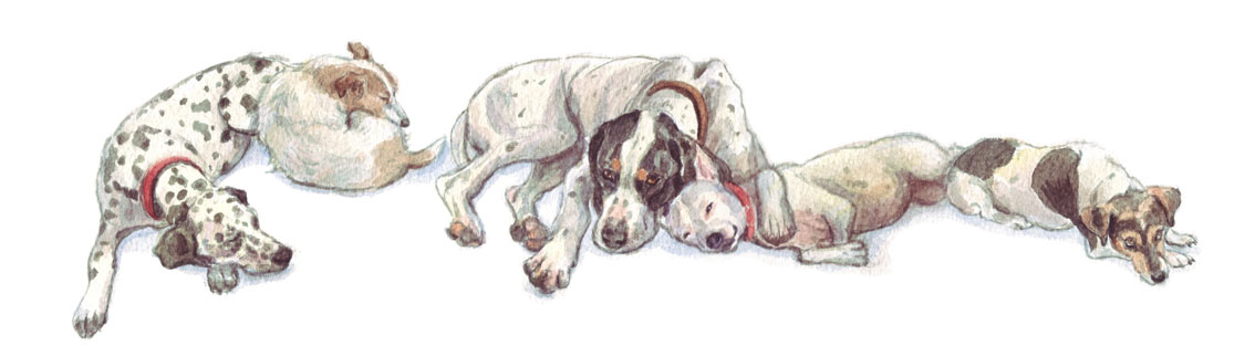Let Sleeping Dogs Lie, watercolour illustration