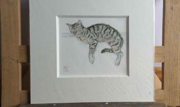 Tabby cat painting watercolour