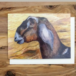 goat greetings card