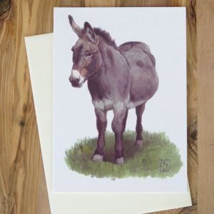 donkey greetings card