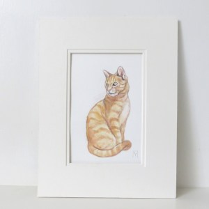 marmalade cat watercolour ill