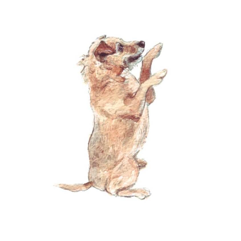 patterdale terrier painting