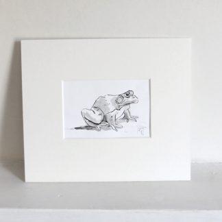 Sitting Frog Pen and Wash Artwork