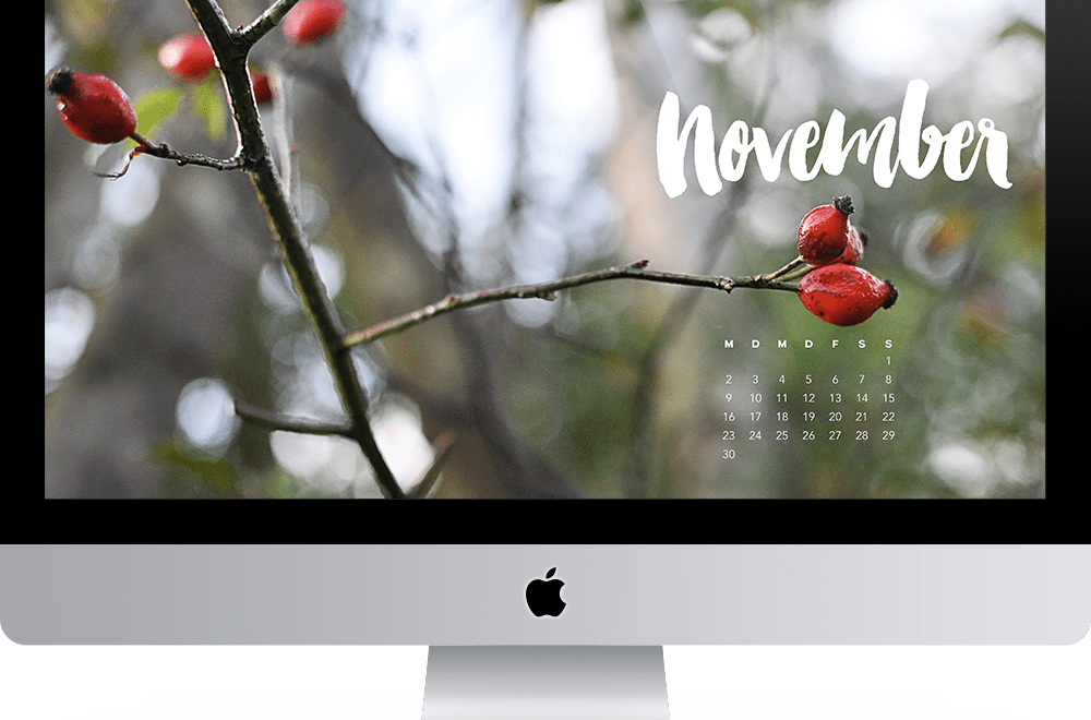 Wallpaper November 2015 Freebie