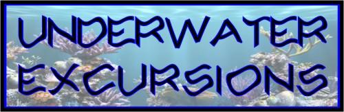underwater-excursions-logo