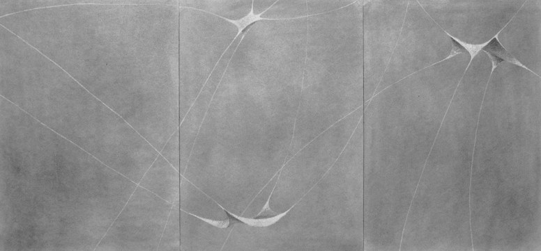 Graphit auf Papier • 101,7 x 48 cm