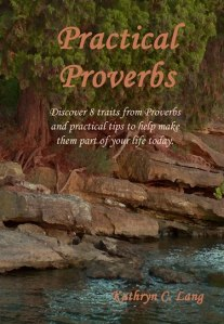 Get your copy of Practical Proverbs today!