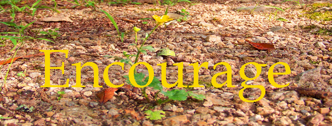 Encouraged through Encouraging