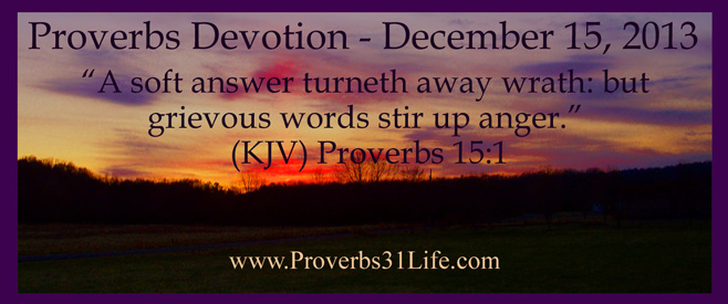 Proverbs Devotion - December 15 2013