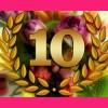 Top 10 flowers
