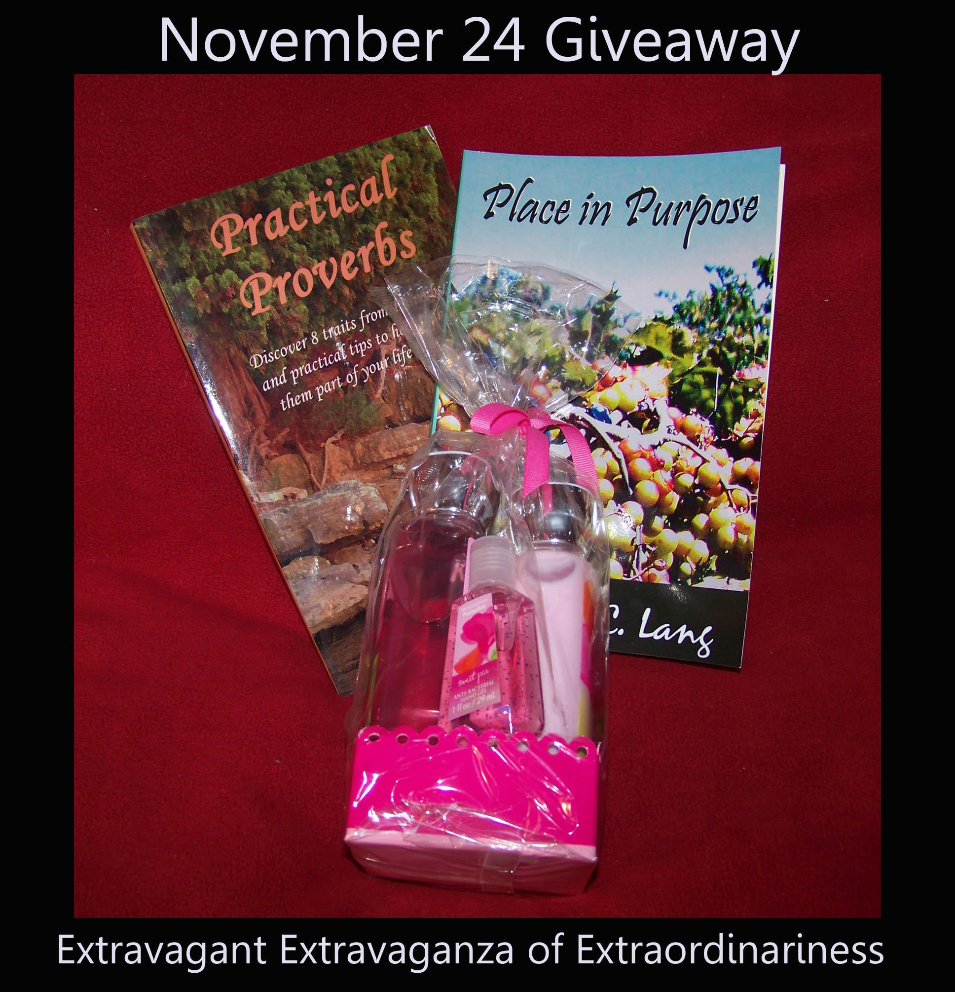 Nov 24 giveaway