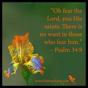 Psalm 34 Weekly Devotional