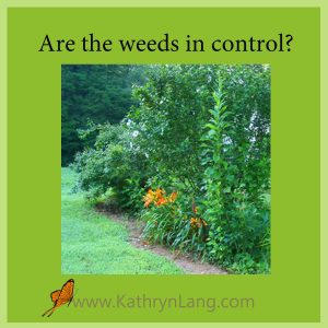 Weeds in control of the garden