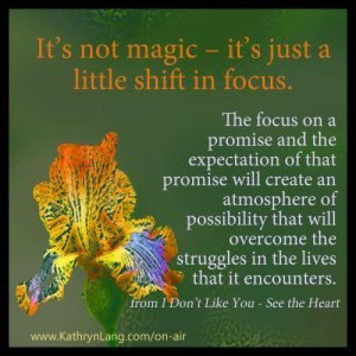focus shift to wisdom