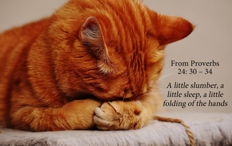A little slumber warning from proverbs
