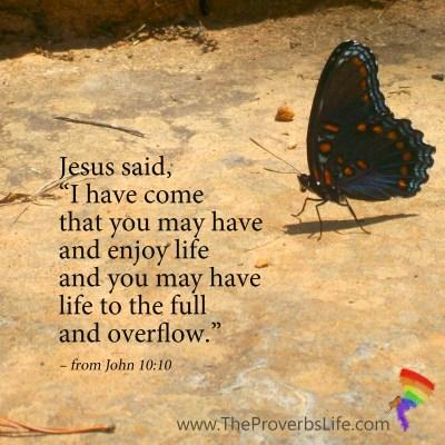 Scripture Focus - John 10:10