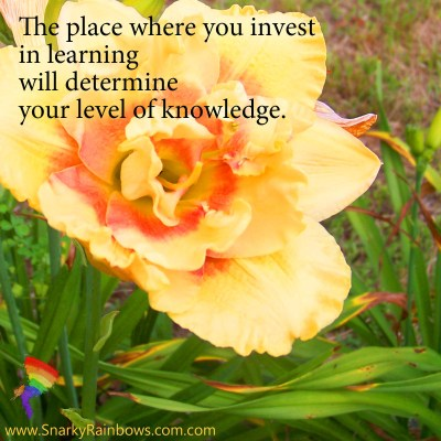 Quote of the Day - invest in learning