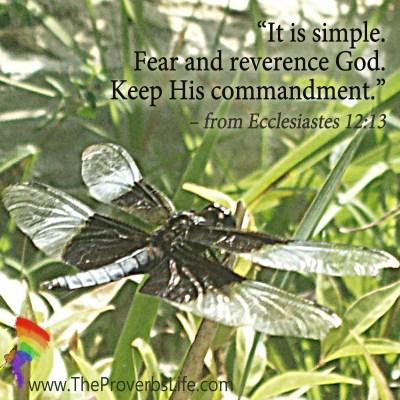 Scripture Focus - Ecclesiastes 12:13