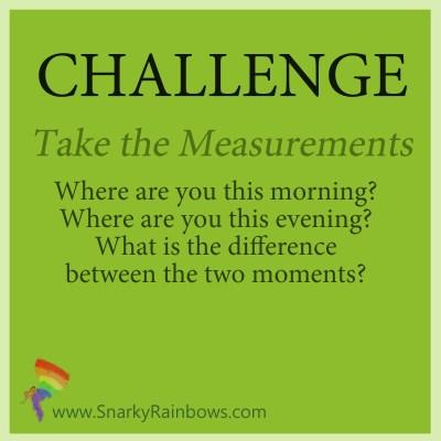Challenge - Take the Measurements