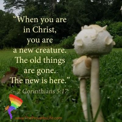 Scripture Focus - 2 Corinthians 5:17